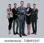 group of smiling business... | Shutterstock . vector #728691247