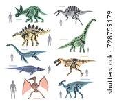 dinosaurs skeletons silhouettes ... | Shutterstock .eps vector #728759179