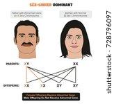 sex linked dominant hereditary... | Shutterstock .eps vector #728796097