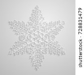 vector lined snowflake. paper... | Shutterstock .eps vector #728831479