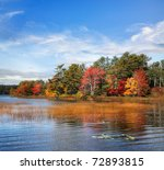 Autumn At Somes Pond  Mount...