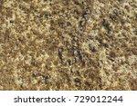 close up of blue water texture... | Shutterstock . vector #729012244