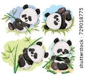 Stock vector funny panda bear baby playing on grass climbing on bamboo stem eating bamboo branch cartoon 729018775