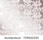 classic pattern ornament vector.... | Shutterstock .eps vector #729032335