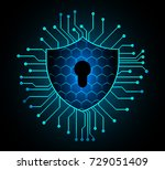 safety concept  closed padlock... | Shutterstock .eps vector #729051409