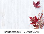 autumn thanksgiving background | Shutterstock . vector #729059641
