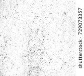 black and white grunge... | Shutterstock . vector #729073357