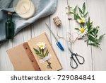 spring mood. herbarium.... | Shutterstock . vector #729084841