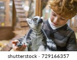 Ring Tailed Lemur And Boy  Kid...