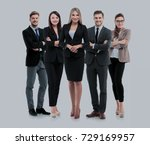 group of smiling business... | Shutterstock . vector #729169957