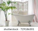 beautiful luxury vintage empty... | Shutterstock . vector #729186301