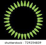 chili icon | Shutterstock .eps vector #729254839