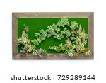 picture frame plastic flowers... | Shutterstock . vector #729289144