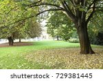 tree in the garden | Shutterstock . vector #729381445
