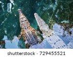 juvenile australian crocodiles... | Shutterstock . vector #729455521