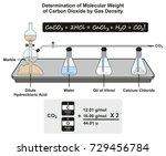 determination of molecular... | Shutterstock .eps vector #729456784