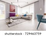dog in a house interior lying... | Shutterstock . vector #729463759