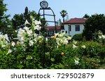 Stock photo flower garden flower garden in hill top park in yokohama japan 729502879