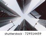 x | Shutterstock . vector #729514459