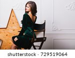 seductive woman in casual... | Shutterstock . vector #729519064