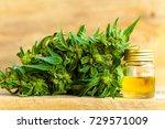 cbd oil hemp products | Shutterstock . vector #729571009