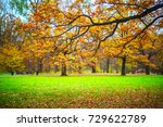 autumn landscape  trees with... | Shutterstock . vector #729622789