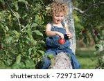 a little boy is sitting in an... | Shutterstock . vector #729717409