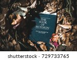 Small photo of Washington, DC - October 7, 2017: The Book of Mormon, a sacred text of the Church of Jesus Christ of Latter-day Saints.