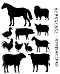 Stock vector farm animals silhouette set 729753679