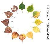 Autumn Concept  Age Changes Of...