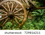 Old wooden wagon in the rain forest of Thailand, closeup - stock photo