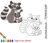 raccoon mother and her baby to... | Shutterstock .eps vector #729835189