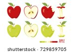 red and green apple set. half... | Shutterstock .eps vector #729859705