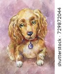 watercolor cocker spaniel  dog... | Shutterstock . vector #729872044