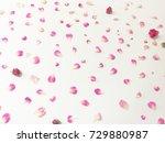 beautiful pink flowers...   Shutterstock . vector #729880987