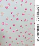 beautiful pink flowers...   Shutterstock . vector #729881017