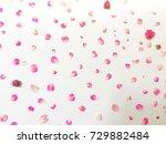 beautiful pink flowers...   Shutterstock . vector #729882484