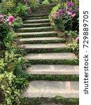 pathway in the garden | Shutterstock . vector #729889705
