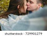 love and affection between a... | Shutterstock . vector #729901279
