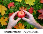 man hands hold bright red apple ... | Shutterstock . vector #729910981