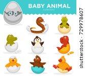 baby animals hatch eggs cartoon ... | Shutterstock .eps vector #729978607