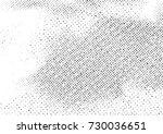 vintage black and white...   Shutterstock .eps vector #730036651