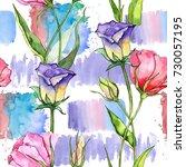 wildflower eustoma flower in a... | Shutterstock . vector #730057195