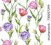 wildflower eustoma flower in a...   Shutterstock . vector #730057399