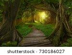 asian jungle | Shutterstock . vector #730186027
