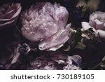 bouquet of pink peonies  dark... | Shutterstock . vector #730189105