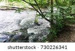 minnehaha creek  | Shutterstock . vector #730226341