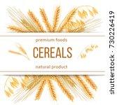 wheat  barley  oat and rye. 3d... | Shutterstock .eps vector #730226419