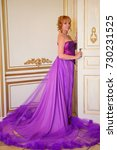beautiful woman in a long dress   Shutterstock . vector #730231525