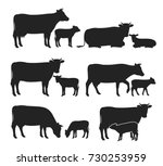 Stock vector vector cow and calf silhouettes isolated on white for farms groceries packaging and branding 730253959